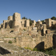 THE RUINS OF CARTHAGO, TUNISIA — Stockfoto