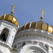 Temple of the Christ of the Savior — Stockfoto