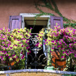 Flowers in Balcony — Stockfoto #2657083