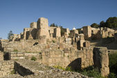 THE RUINS OF CARTHAGO, TUNISIA — 图库照片