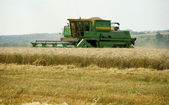 Harvester removes grains — Stock Photo