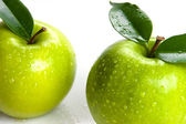 Two Apples — Stock Photo