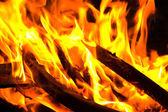 Burning firewood — Stock Photo