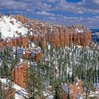 Bryce canyon panorama — Stock Photo #2651064