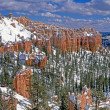 Stock Photo: Bryce canyon panorama