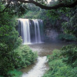 Dangar Falls — Stock Photo