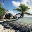 Stock Photo: Seychelles