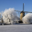 Winter in Holland - Stock Photo