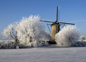 Winter in Holland — Stock Photo