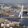 Erasmus bridge - Foto de Stock