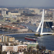 Erasmus bridge - 图库照片