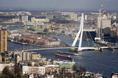 Erasmus bridge — Stock Photo