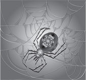 Silver Spider — Stock Vector