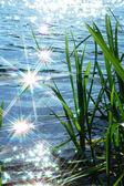 éclat lumière soleil vague — Photo