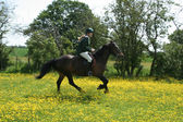 Young Girl Riding in Buttercups — Stock Photo
