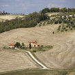 Typical tuscan landscape - Stock Photo