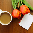 Composition with tulips — Stock Photo