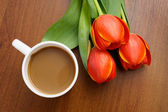 Coffee with tulips — Stock Photo