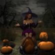Pumpkin Witch — Stock Photo #2673071