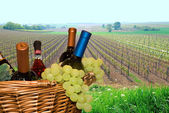 Basket with grapes and wine — Stock Photo