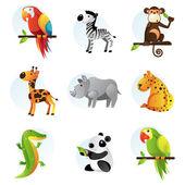 Animales de selva y safari brillantes — Vector de stock