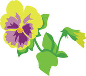 Flower in color 03