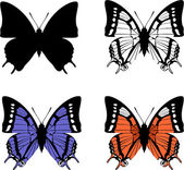 Vector Butterfly set 04