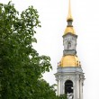 Постер, плакат: St Nicolas Church in St Petersburg Ru