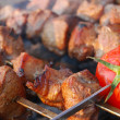 thumbnail of Shashlik