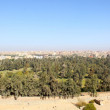 thumbnail of The skyline of Cairo Egypt
