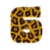 číslo z tygří styl srst abecedy