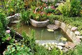 Verde; stagno; flusso; acqua; pietre
