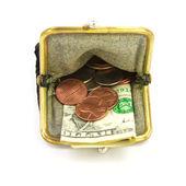 Pénzt. egy dollár és érmék erszényes