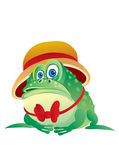 Green toad in a hat