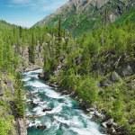 thumbnail of Mountain river