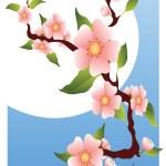 Постер, плакат: Sakura