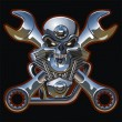 thumbnail of Vector motorhead