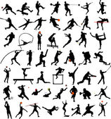 50 high quality sport silhouettes collection - vector