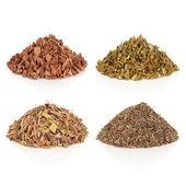 Medicinal and Magical Herbs