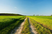 Venkovské silnice při západu slunce