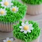 thumbnail of Daisy cupcakes