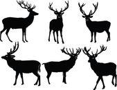 Deers collection - vector
