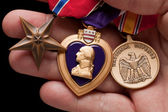 Man Holding Purple Heart and War Medals