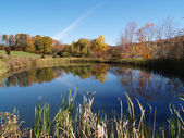 Nyugodt tó