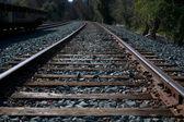 Miller Park Railroad Tracks Off into the Dark Wo