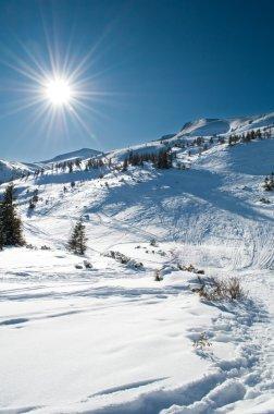 Winter mountainous landscape