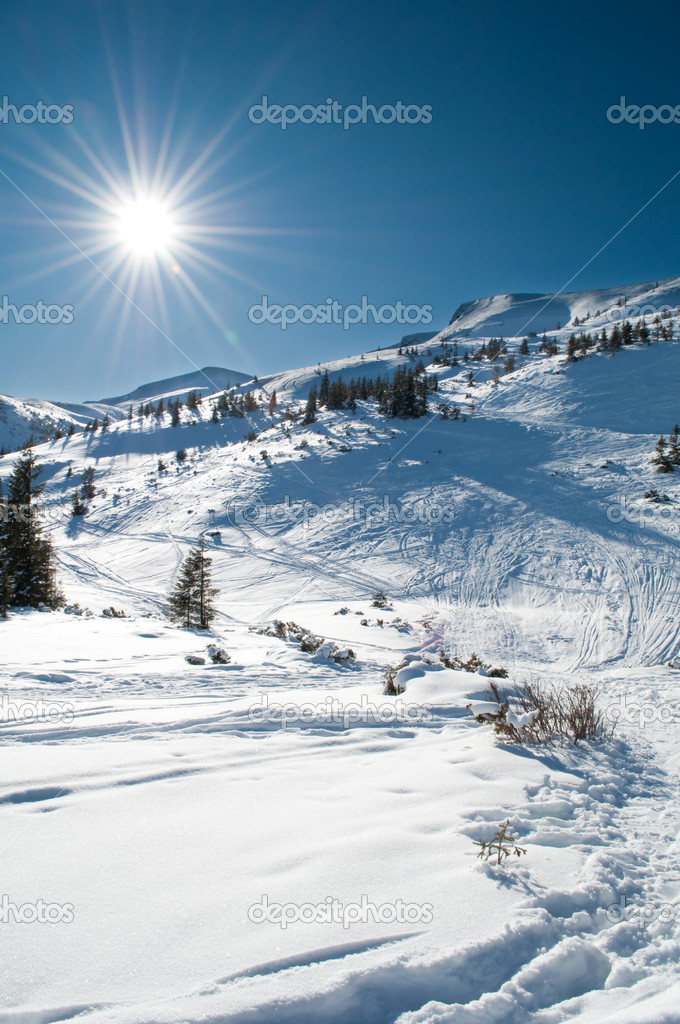 Winter mountainous landscape