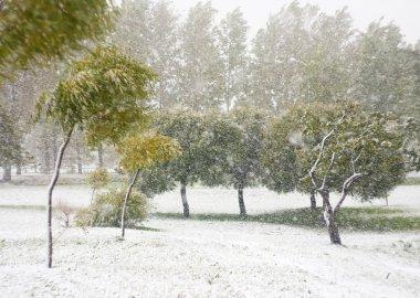 Kar yağışıweather condition
