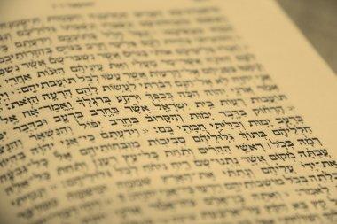 Old Open Hebrew Bible Book (Sefer Tora) stock vector