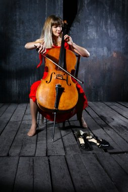 Beautiful cello musician